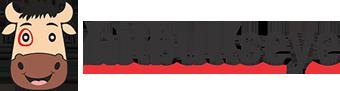 Hitbullseye Logo